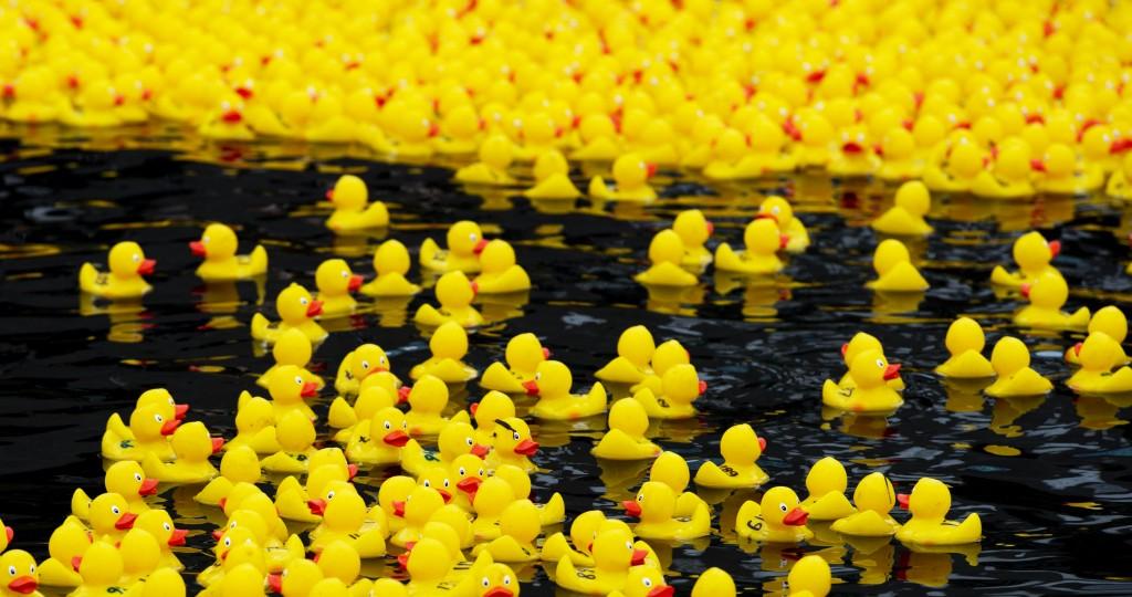1500 badeendjes voor de toekomst van zwerfjongeren